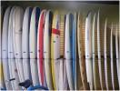 Island Native Surf Shop Photos